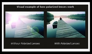 are polarized lenses better for your eyes