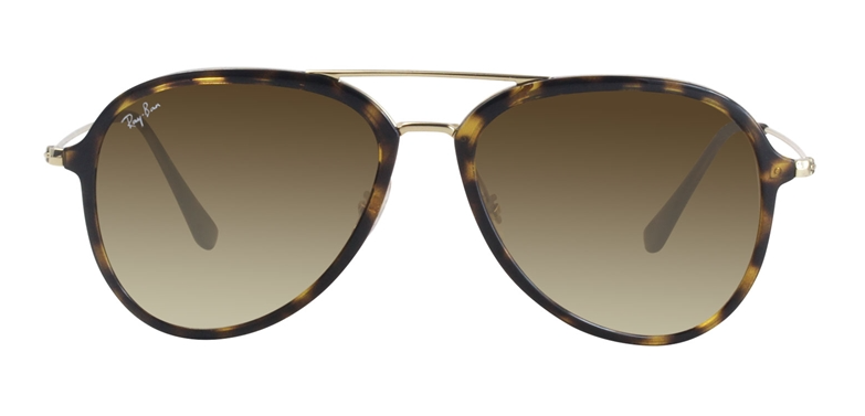 Ray-Ban RB 4298 Aviator Sunglasses